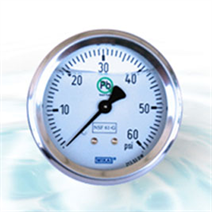 Liquid-Filled Pressure Gauges: Protection against Vibration, Pulsation and Pressure Spikes