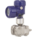 Differential pressure transmitter model DPT-10, dual chamber housing